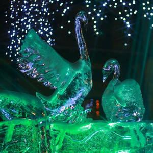 Ice 2009 - 7