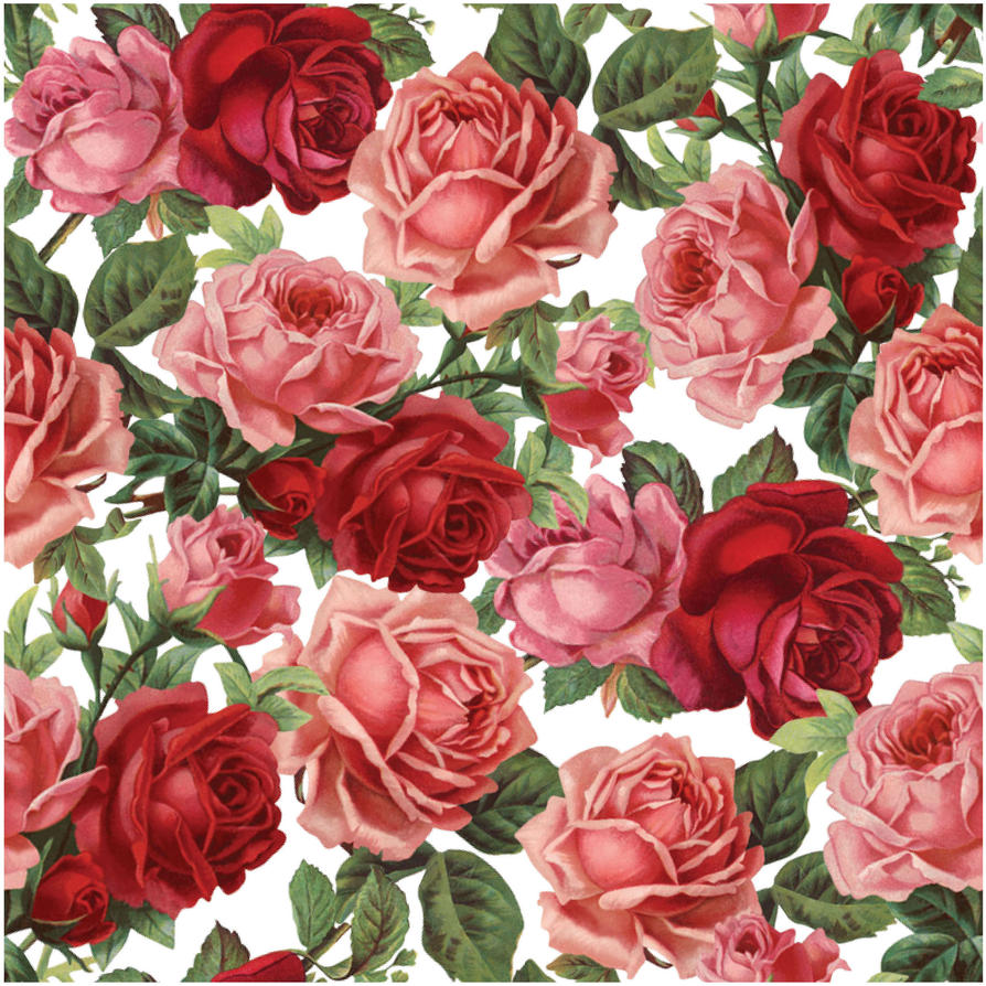 Massif image for printable pictures of flowers