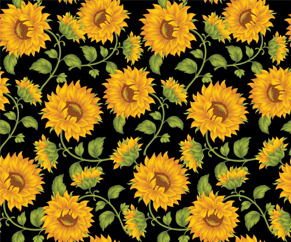 Sunflower Print In Black Background By DonCabanza