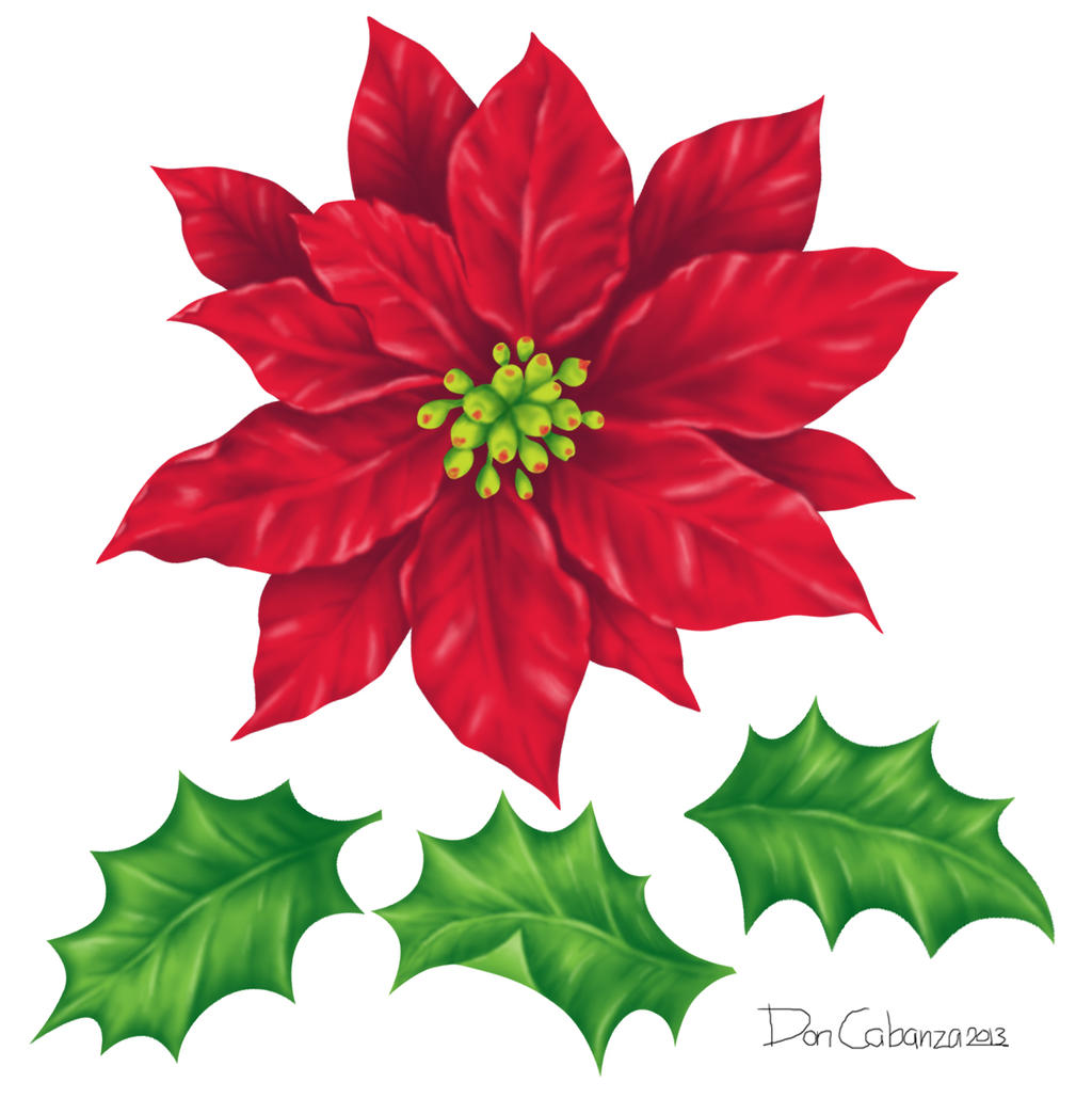 Poinsettia And Holly Leaves Design Components by ...