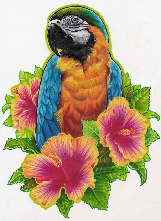 parrot by kritzelkiki