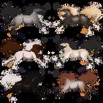 OTA Gypsy Vanner Stallion Adopts OPEN 2/6 by JunkDrawerAdopts