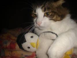 Penguin Love pt 1 by mr-penguin