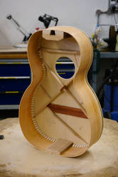Parlour Guitar Build - Braced With Ribs On