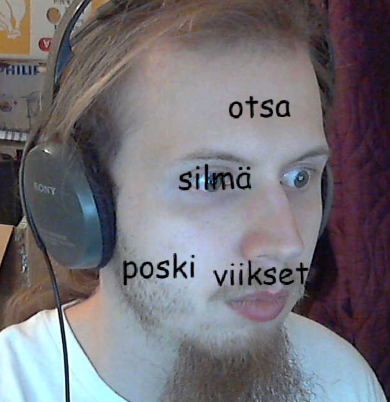 Learn finnish by sane69