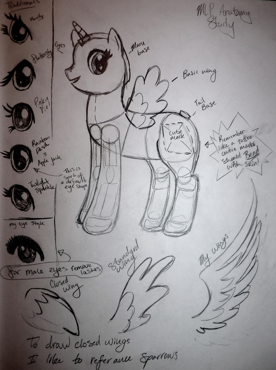 MLP Tutorial Part 1 by ChelseaSnow