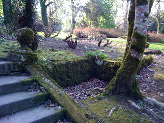 Johnstown Castle Grounds 1 by odingraphics