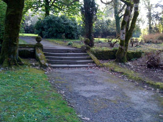 Johnstown Castle Grounds 2 by odingraphics