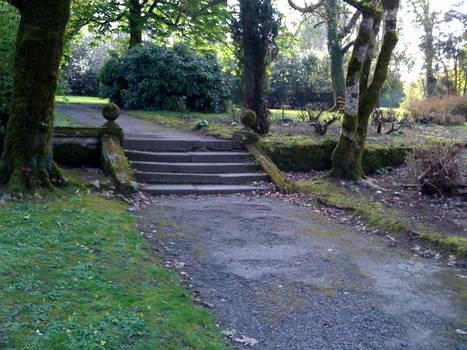 Johnstown Castle Grounds 2