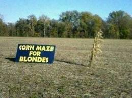 Corn Maze for Blondes by sierrashorses