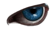 Gollum's Eye by AlisaLiMaylin