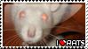 I :heart: rats by Ratticons