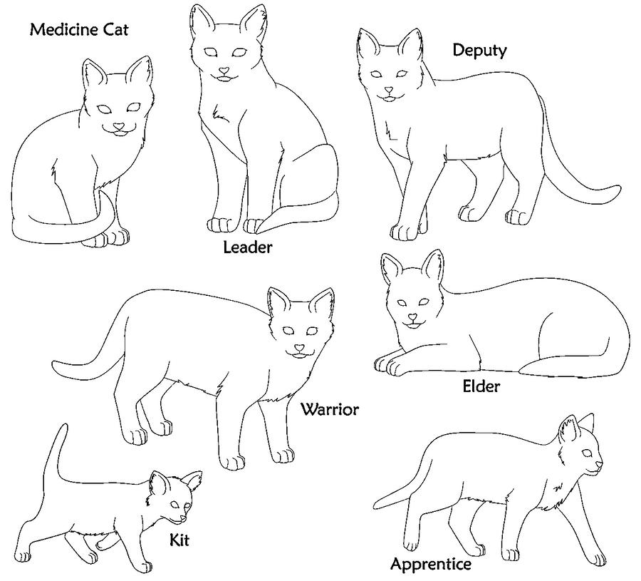 Warrior Cat Clan Base Warrior Cat Bases Paint Format