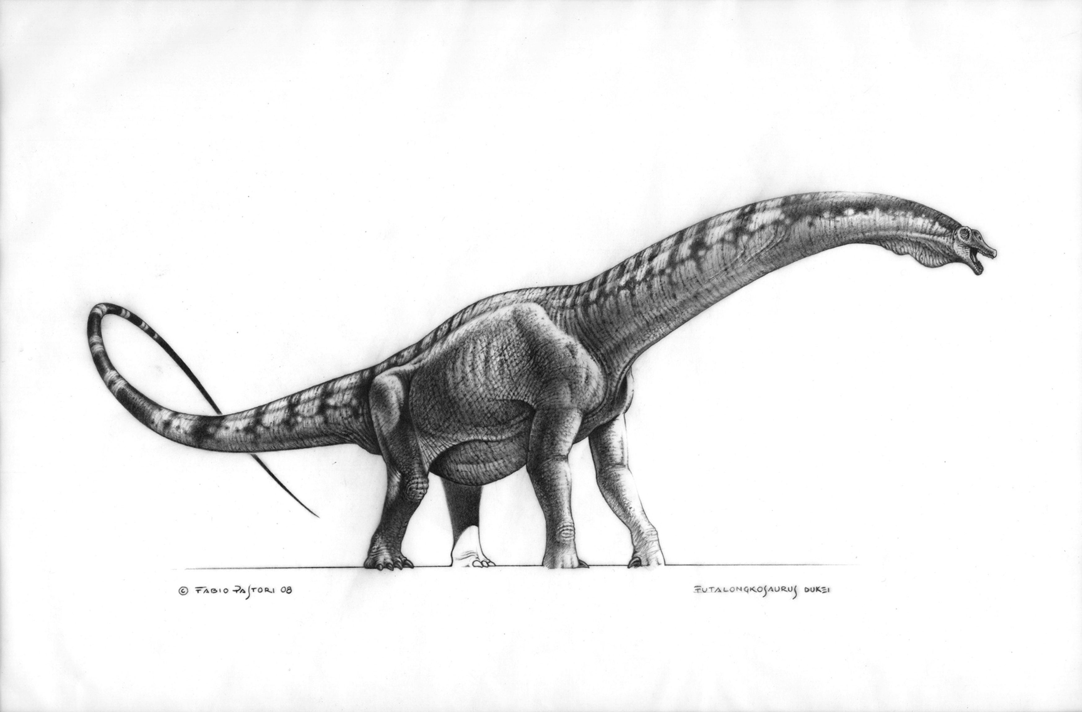 Realistic Dinosaurs Drawing | www.imgkid.com - The Image ...
