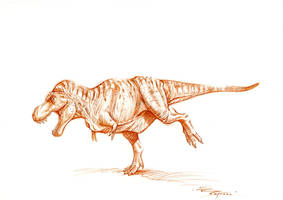 T.rex sketch by PaleoPastori