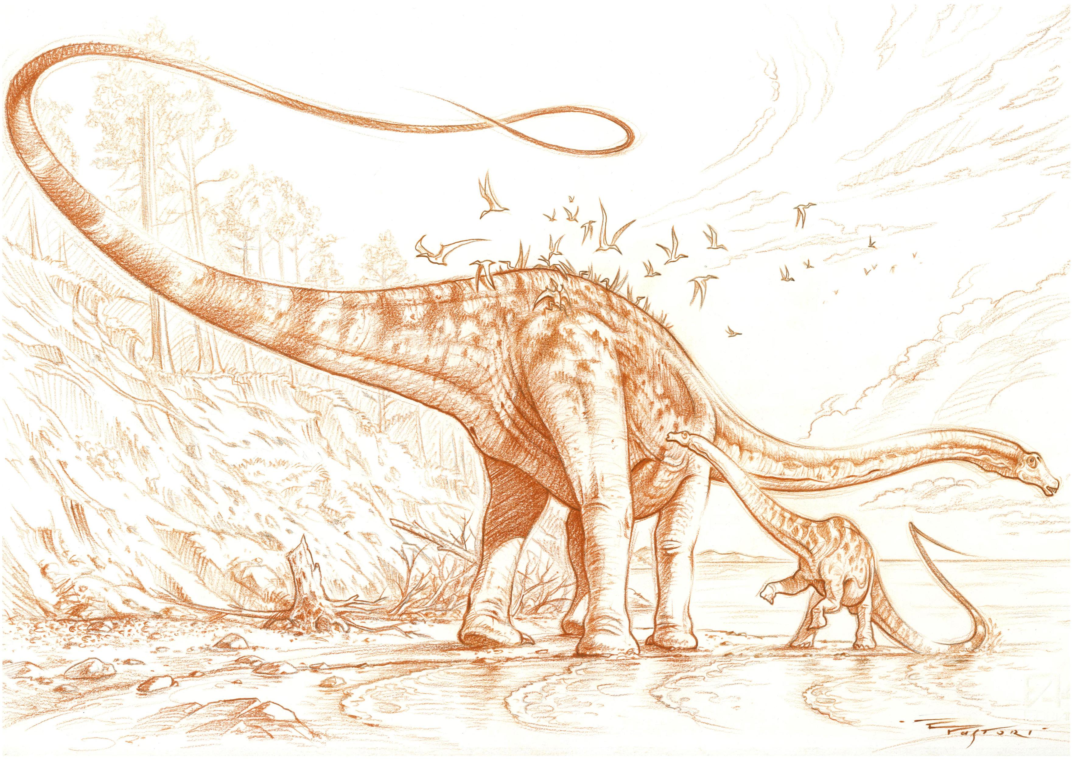 Diplodocus carnegii with baby by PaleoPastori