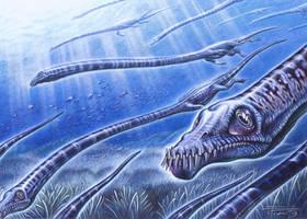 Tanystropheus by PaleoPastori