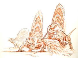 Dimetrodon by PaleoPastori