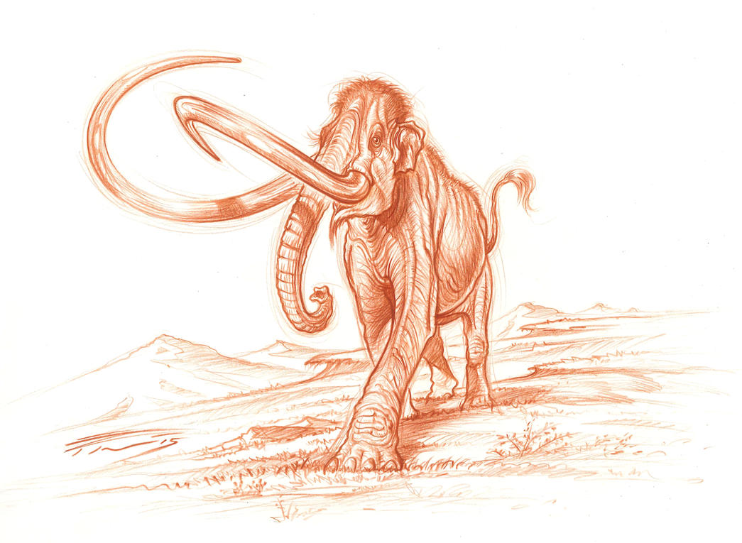 Columbian Mammoth by PaleoPastori