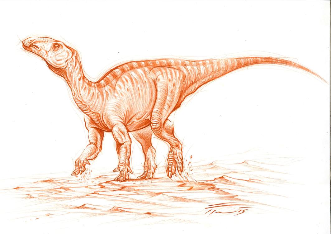 Eolambia caroljonesa by PaleoPastori