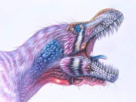 Tyrannosaurus rex BHIGR 3033 - Stan
