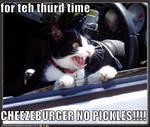Cheezeburger frustrationz