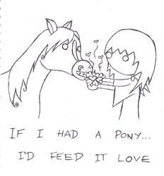 I Still Want A Pony