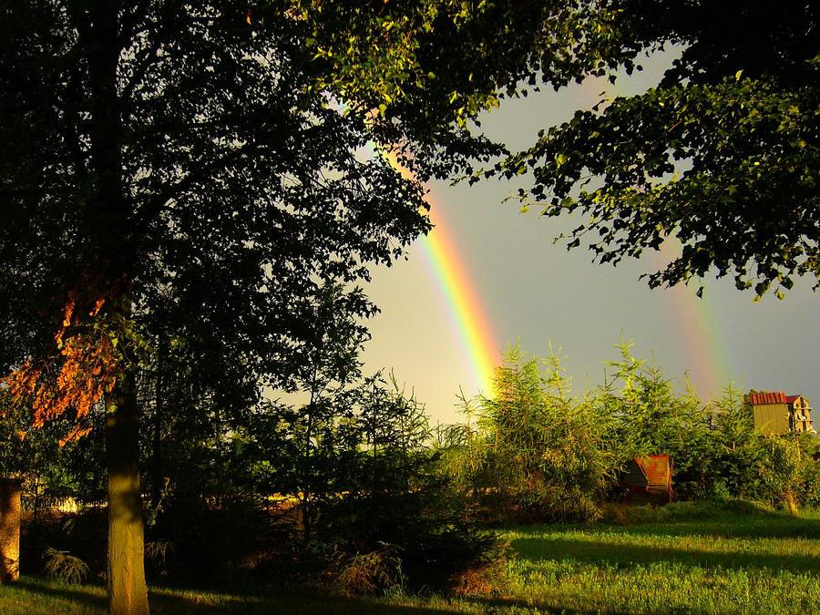 Rainbows by YakuzaKuroi