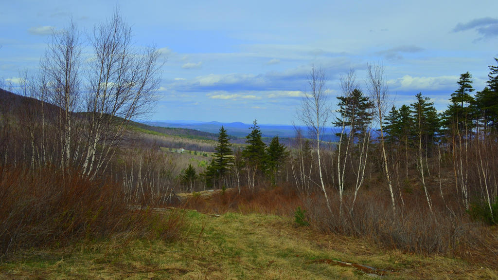 Great Land of New Hampshire by wagn18