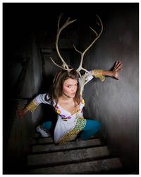 Deer... by HugoLeijon