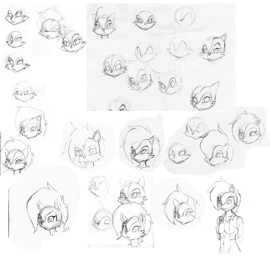 Sally Attempts by Shen-fn-Woo