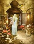 A faerie's house of wings