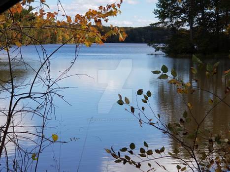 At the lake