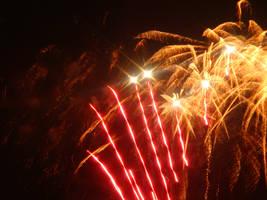 2010 Fireworks 20