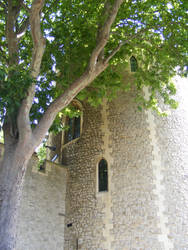 Leafy Tower