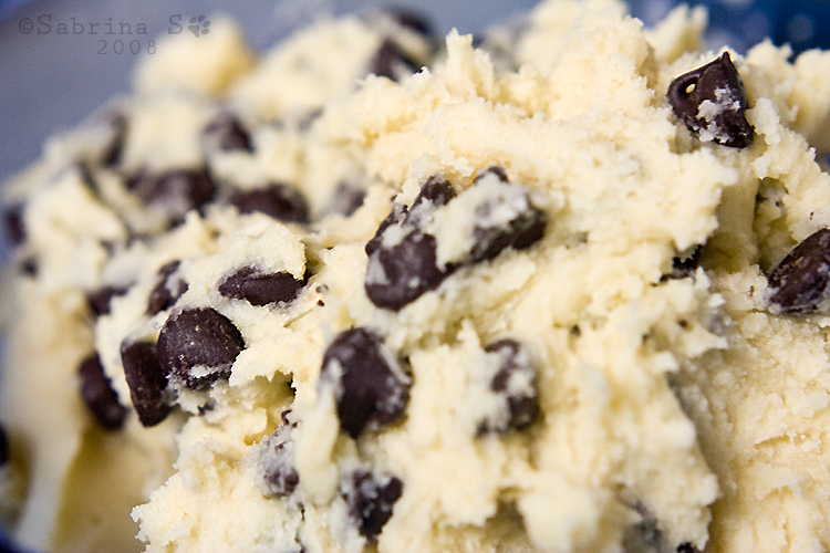 Chocolate Chip Cookie Dough by aheria