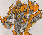 Bumblebee Colored
