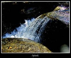 Splash by Avalancha