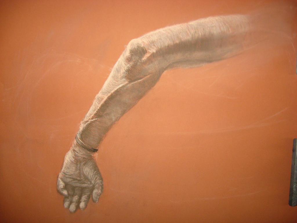 Arm study by Pyrosity