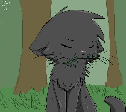 Yellowfang by Snow-Berries