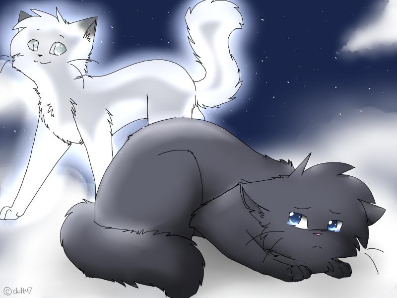 Bluestar... by Snow-Berries