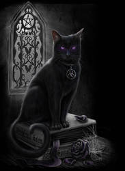 Witches Black Cat by Sheblackdragon