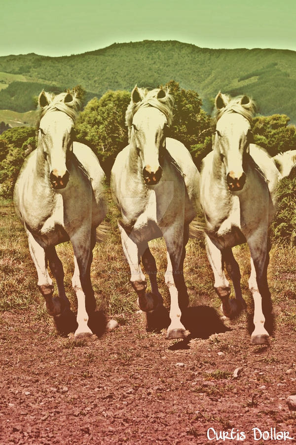 White Horse by Lakesideartist1984