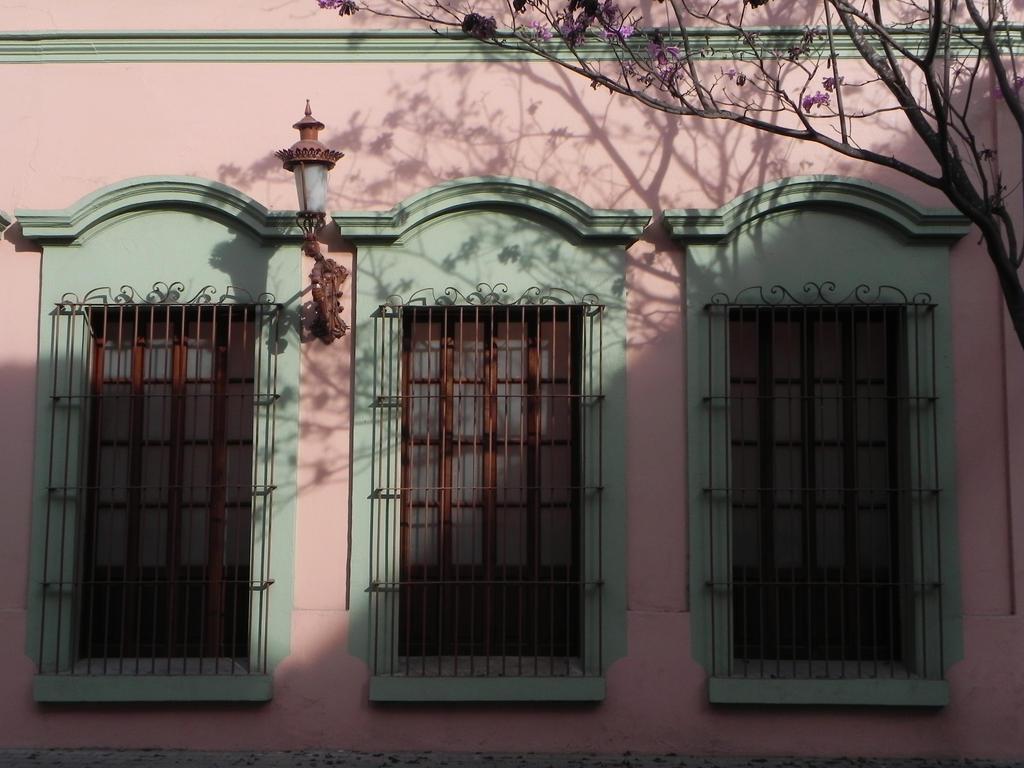 Casa Haas by Darellos