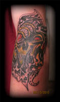 Tims Coverup