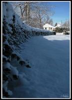 Heritage Park Snow by Adaera