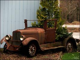 Tree Truck by Adaera