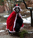 There is a Krampus in my garden! by IllyDragonfly