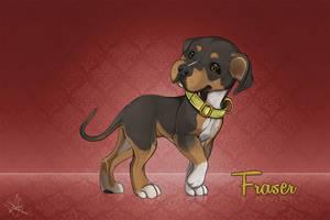 Fraser w/Video! by GoPuppy
