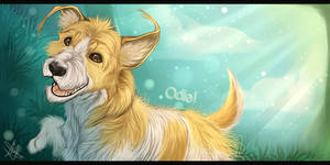 Happy Go Odie! by GoPuppy